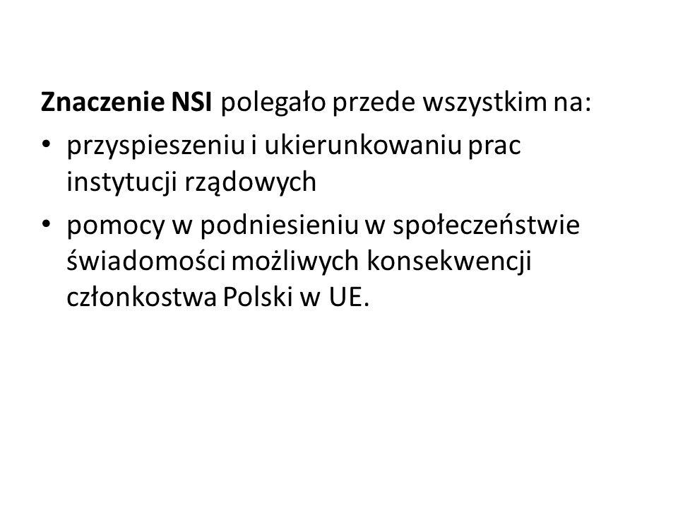 Znaczenie NSI polegało przede wszystkim na: