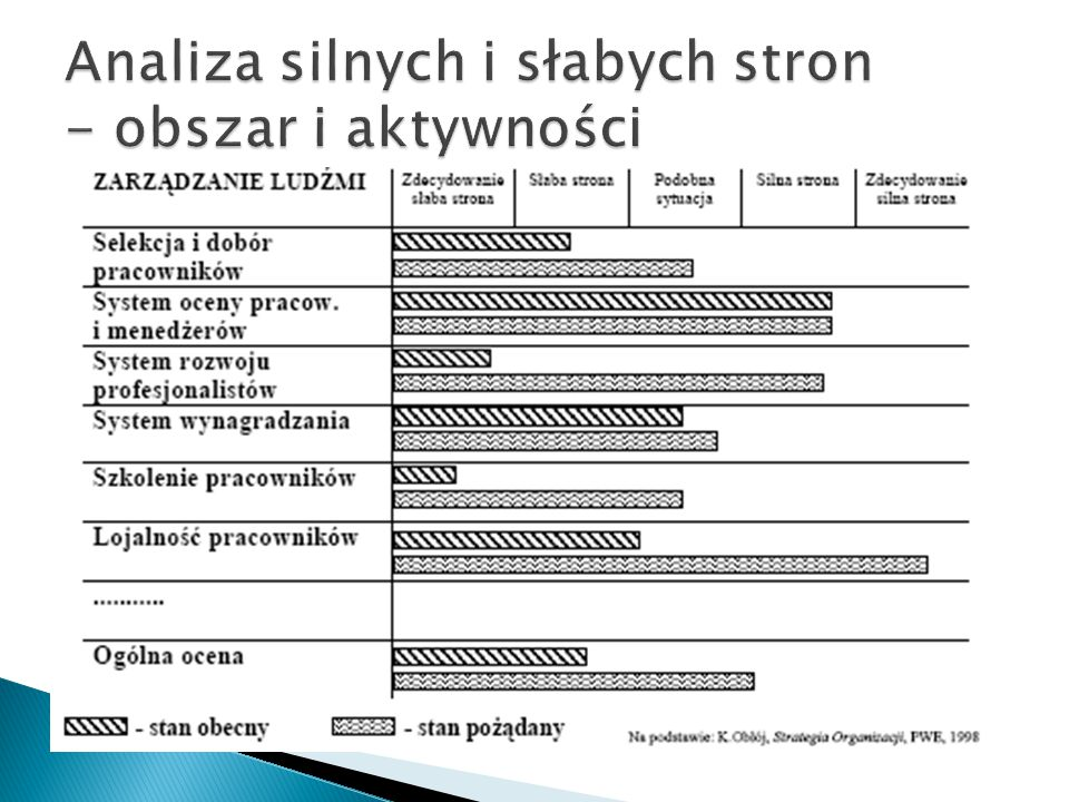Analiza silnych i słabych stron - obszar i aktywności