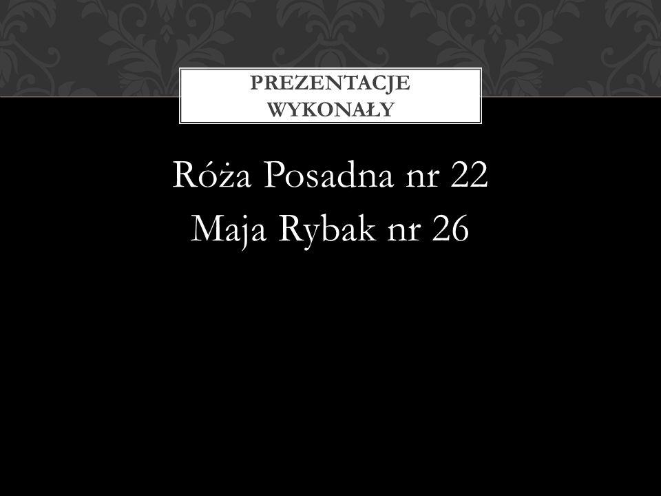 Róża Posadna nr 22 Maja Rybak nr 26