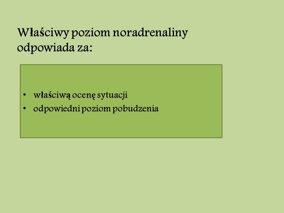 Właściwy poziom noradrenaliny odpowiada za: