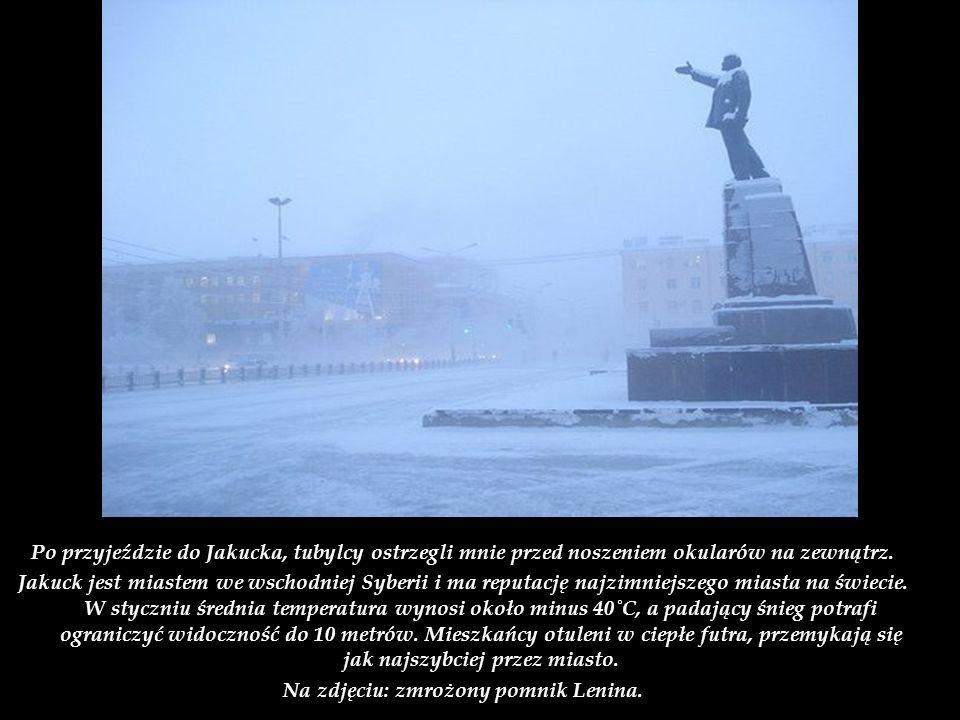 Na zdjęciu: zmrożony pomnik Lenina.