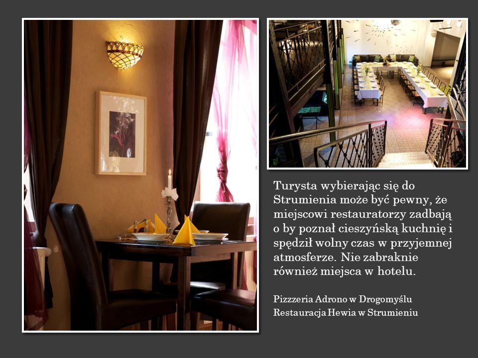 Turysta wybierając się do Strumienia może być pewny, że miejscowi restauratorzy zadbają o by poznał cieszyńską kuchnię i spędził wolny czas w przyjemnej atmosferze. Nie zabraknie również miejsca w hotelu.