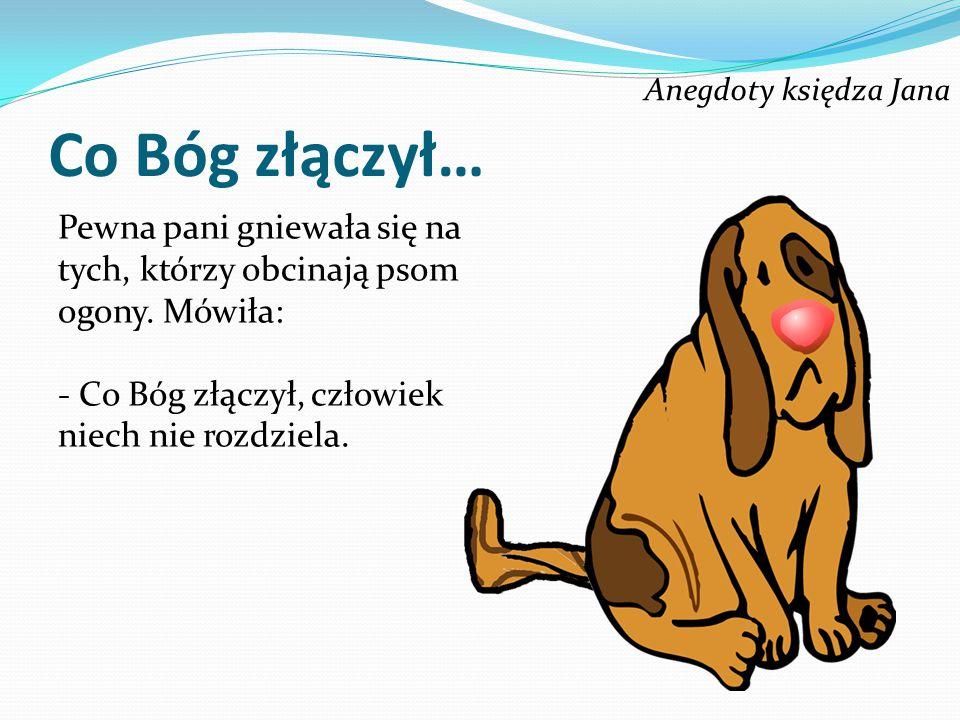 Co Bóg złączył… Pewna pani gniewała się na tych, którzy obcinają psom ogony.