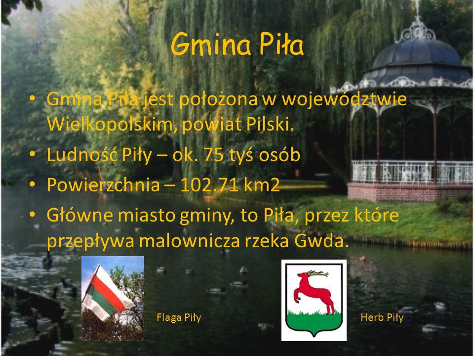 Gmina Piła Gmina Piła jest położona w województwie Wielkopolskim, powiat Pilski. Ludność Piły – ok. 75 tyś osób.