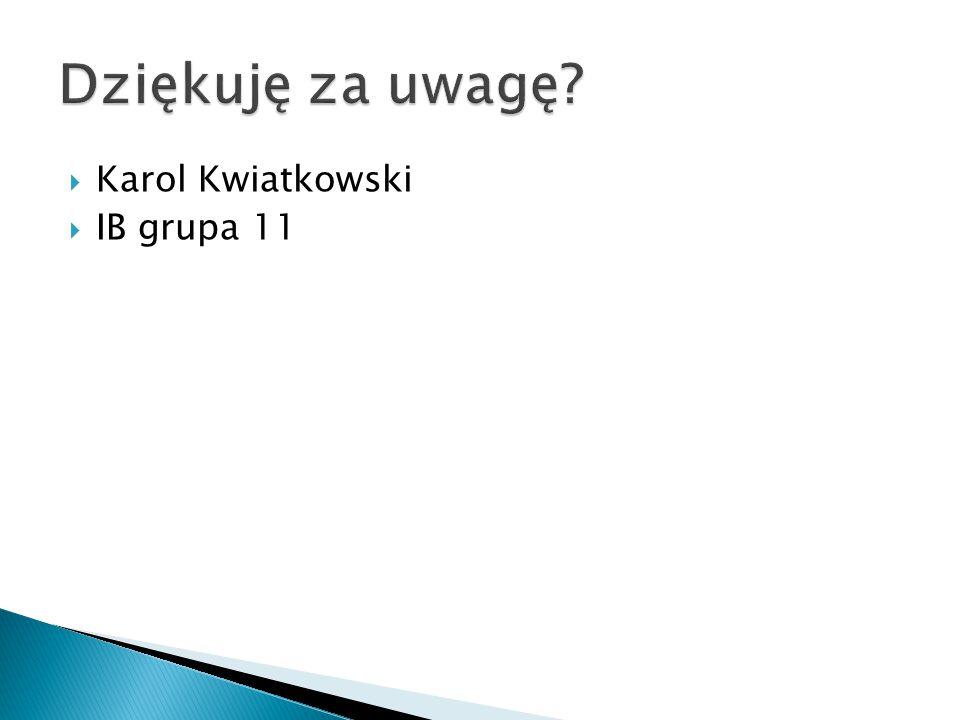 Dziękuję za uwagę Karol Kwiatkowski IB grupa 11