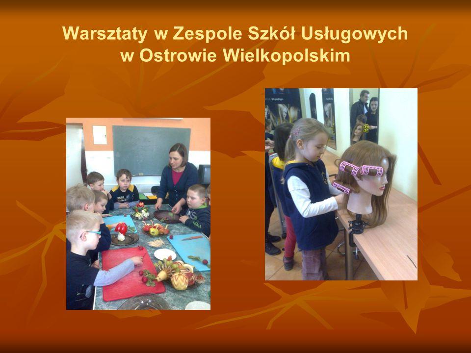Warsztaty w Zespole Szkół Usługowych w Ostrowie Wielkopolskim