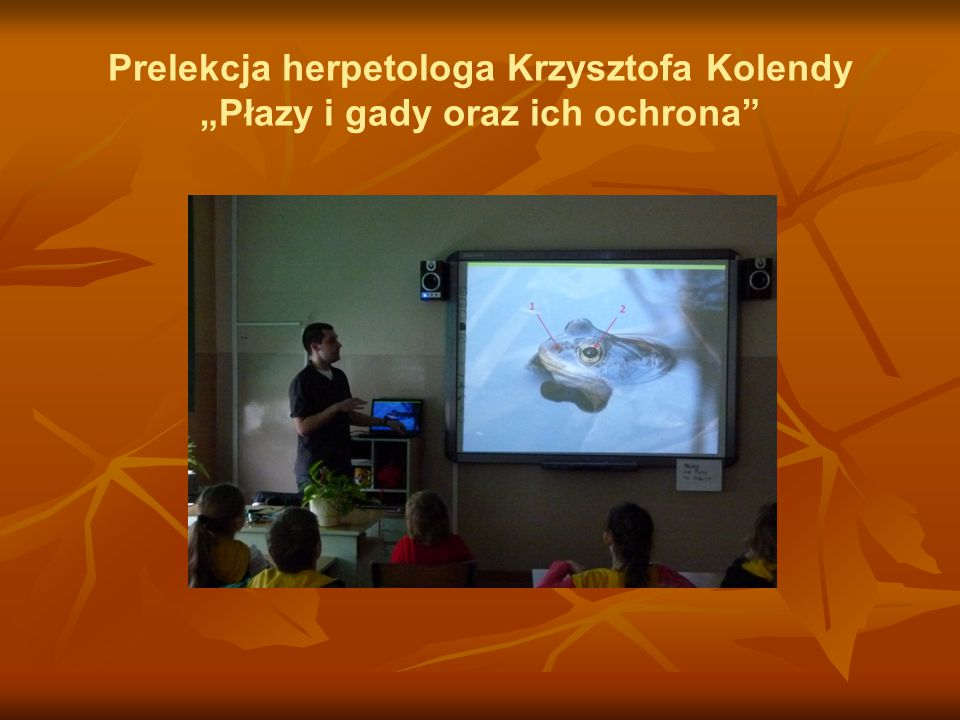 """Prelekcja herpetologa Krzysztofa Kolendy """"Płazy i gady oraz ich ochrona"""