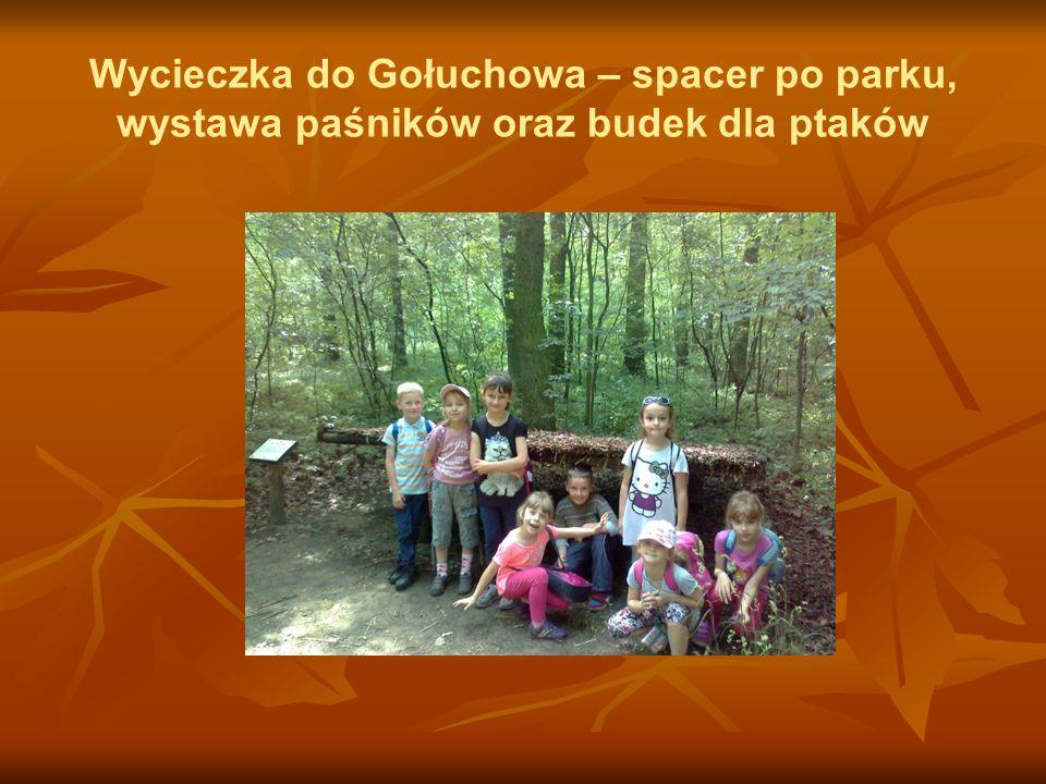 Wycieczka do Gołuchowa – spacer po parku, wystawa paśników oraz budek dla ptaków