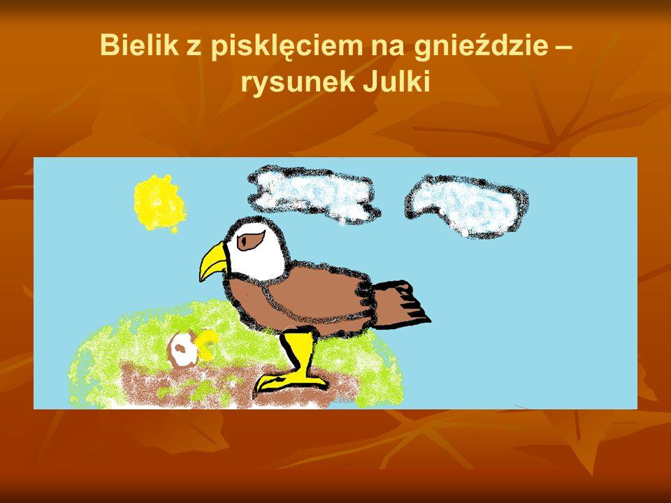 Bielik z pisklęciem na gnieździe – rysunek Julki