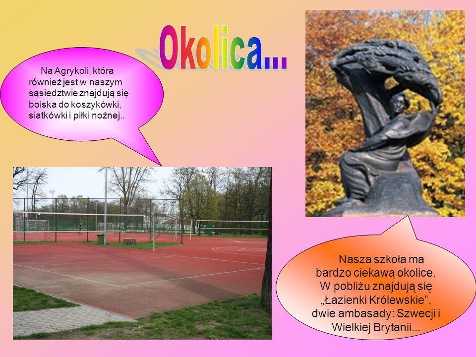Okolica... Na Agrykoli, która również jest w naszym sąsiedztwie znajdują się boiska do koszykówki, siatkówki i piłki nożnej..