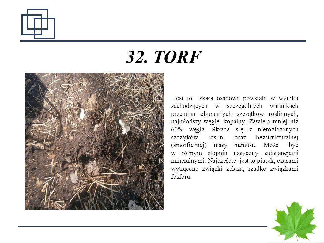 32. TORF