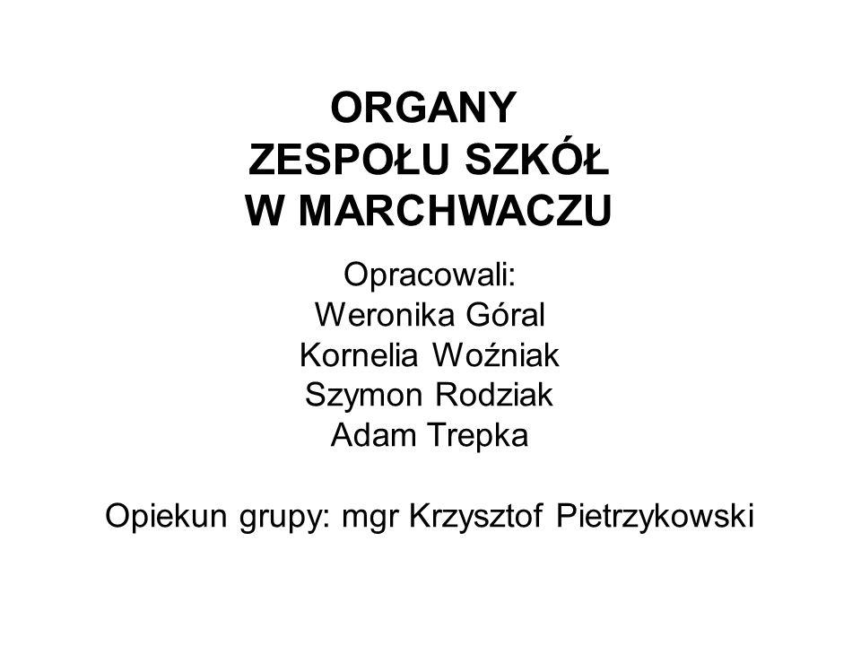 Opiekun grupy: mgr Krzysztof Pietrzykowski