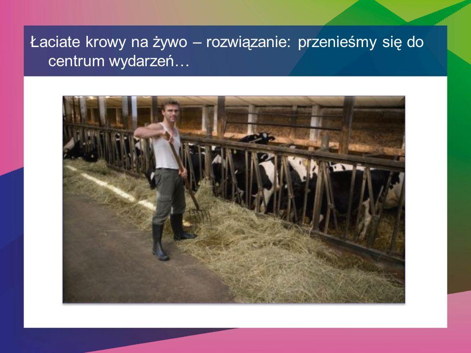 Łaciate krowy na żywo – rozwiązanie: przenieśmy się do centrum wydarzeń…