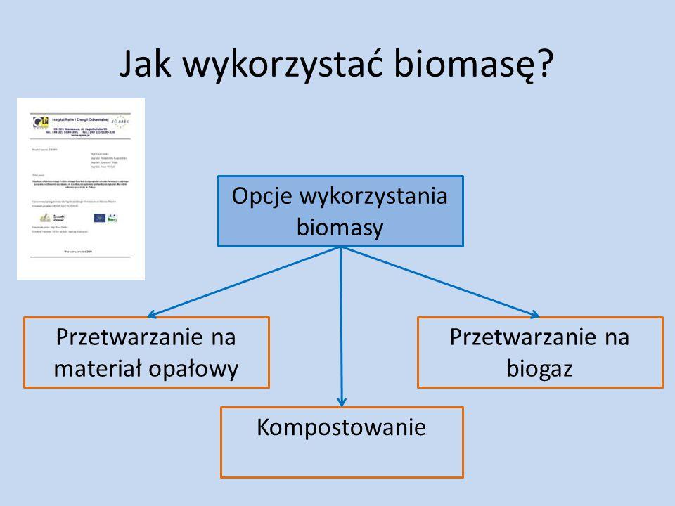 Jak wykorzystać biomasę