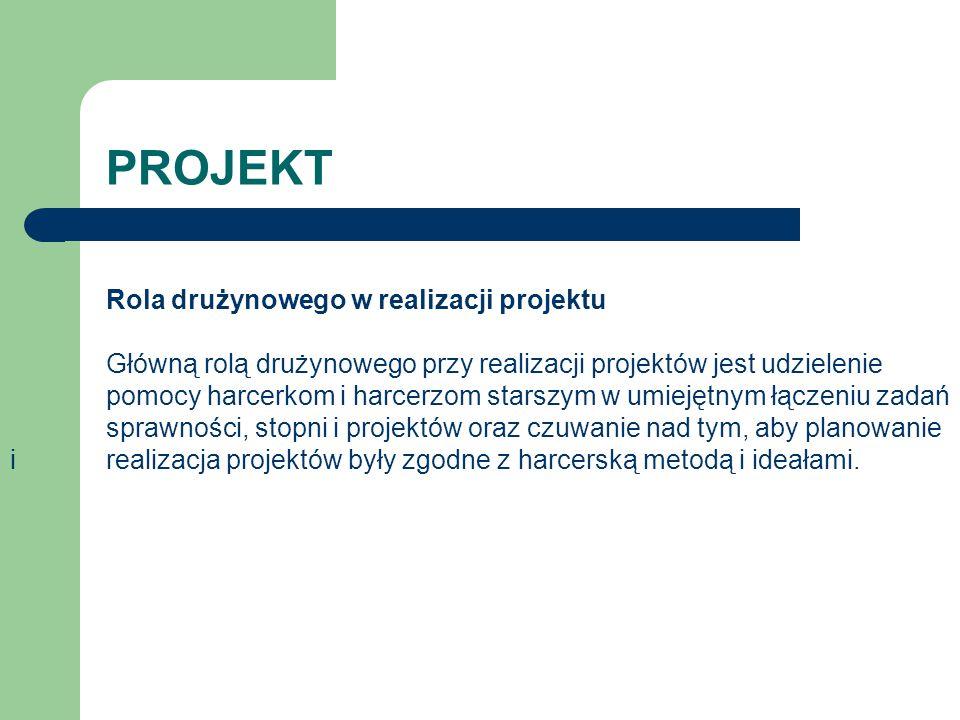 PROJEKT Rola drużynowego w realizacji projektu