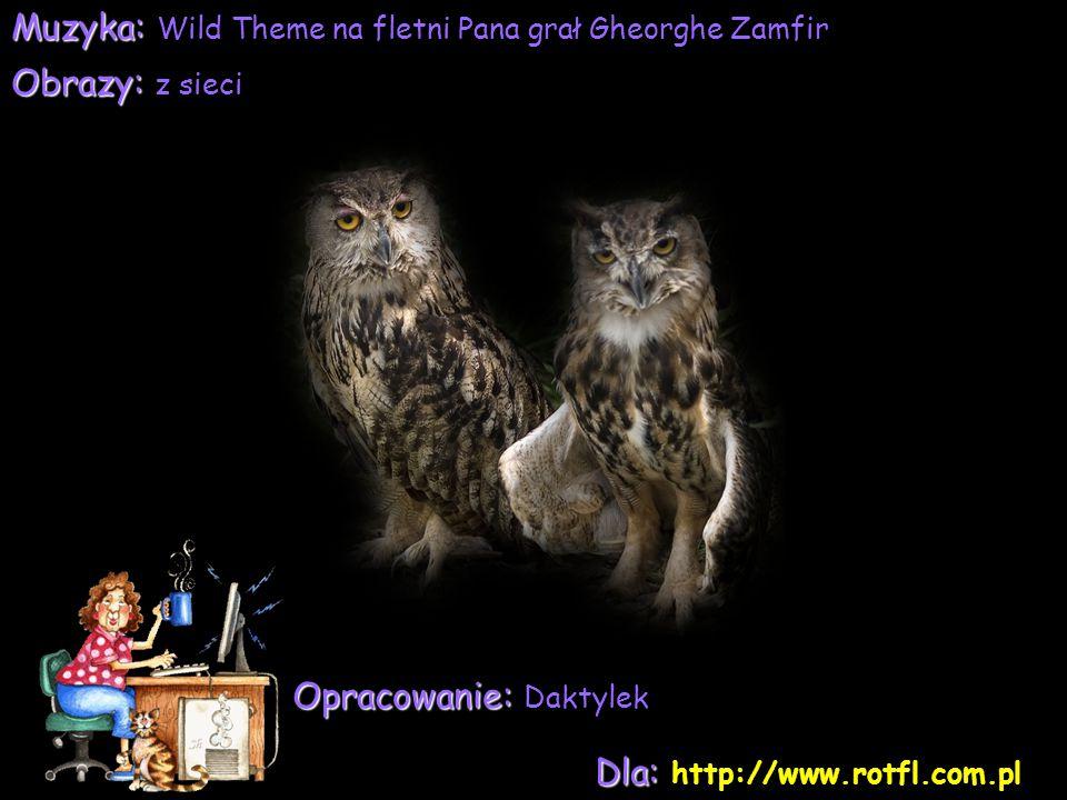 Muzyka: Wild Theme na fletni Pana grał Gheorghe Zamfir