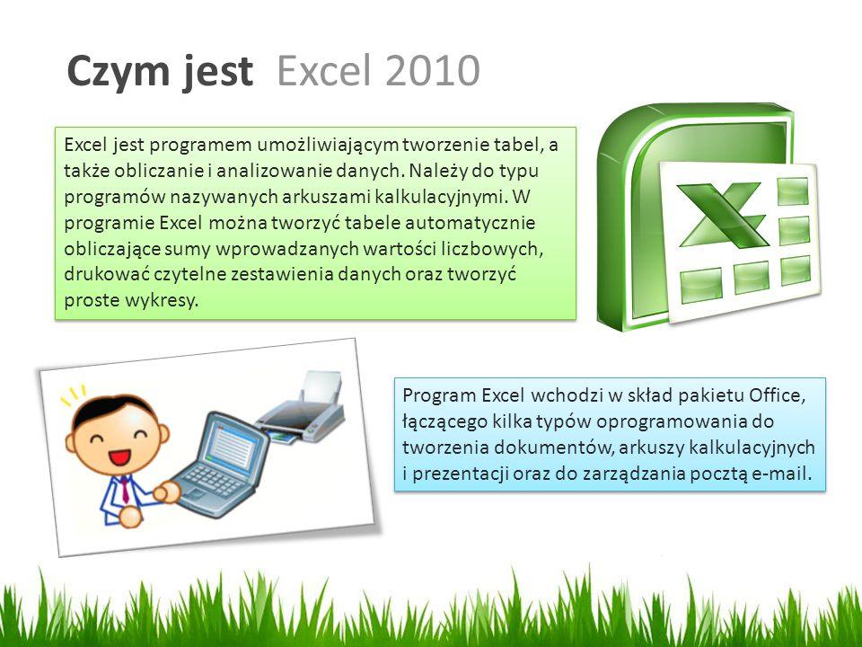 Czym jest Excel 2010