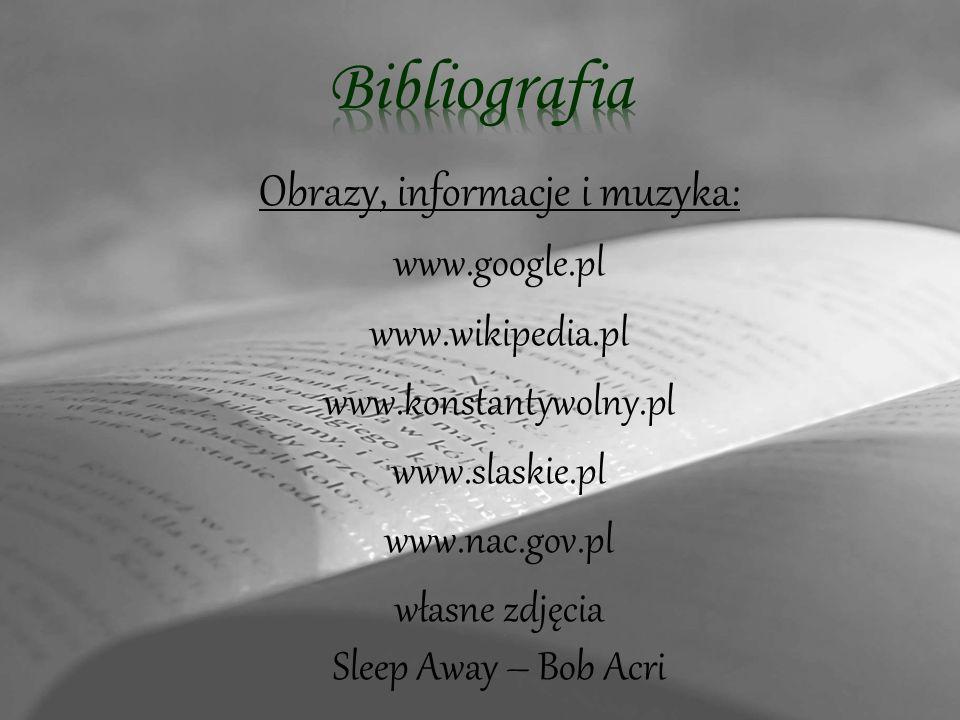 Bibliografia Obrazy, informacje i muzyka: www.google.pl