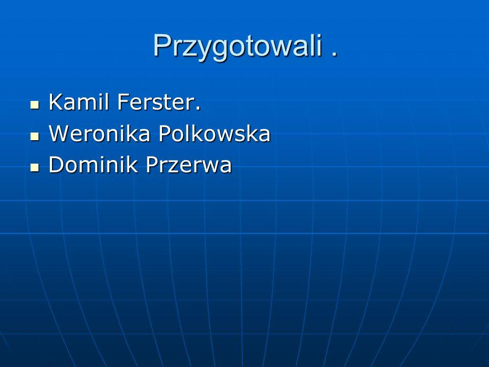 Przygotowali . Kamil Ferster. Weronika Polkowska Dominik Przerwa