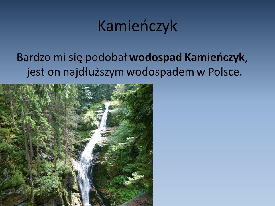 Kamieńczyk Bardzo mi się podobał wodospad Kamieńczyk, jest on najdłuższym wodospadem w Polsce.