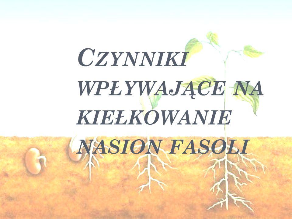 Czynniki wpływające na kiełkowanie nasion fasoli