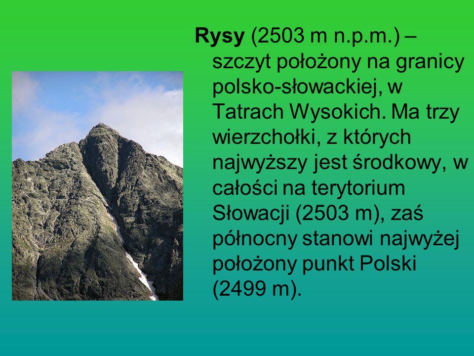 Rysy (2503 m n.p.m.) – szczyt położony na granicy polsko-słowackiej, w Tatrach Wysokich.