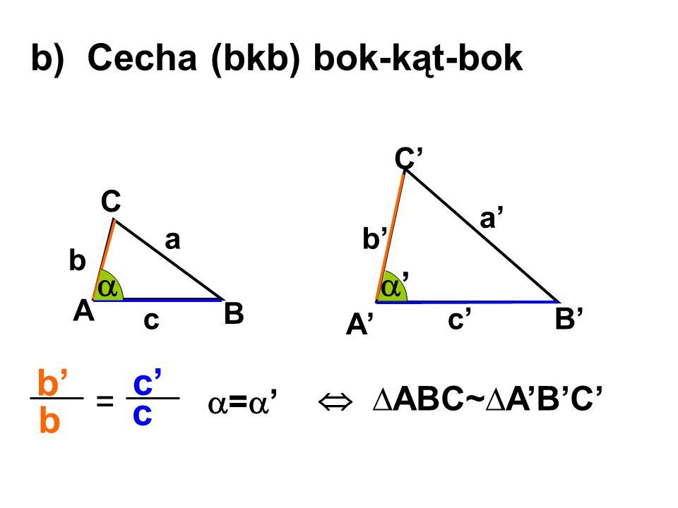 b) Cecha (bkb) bok-kąt-bok