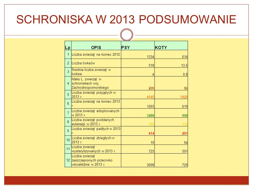 SCHRONISKA W 2013 PODSUMOWANIE