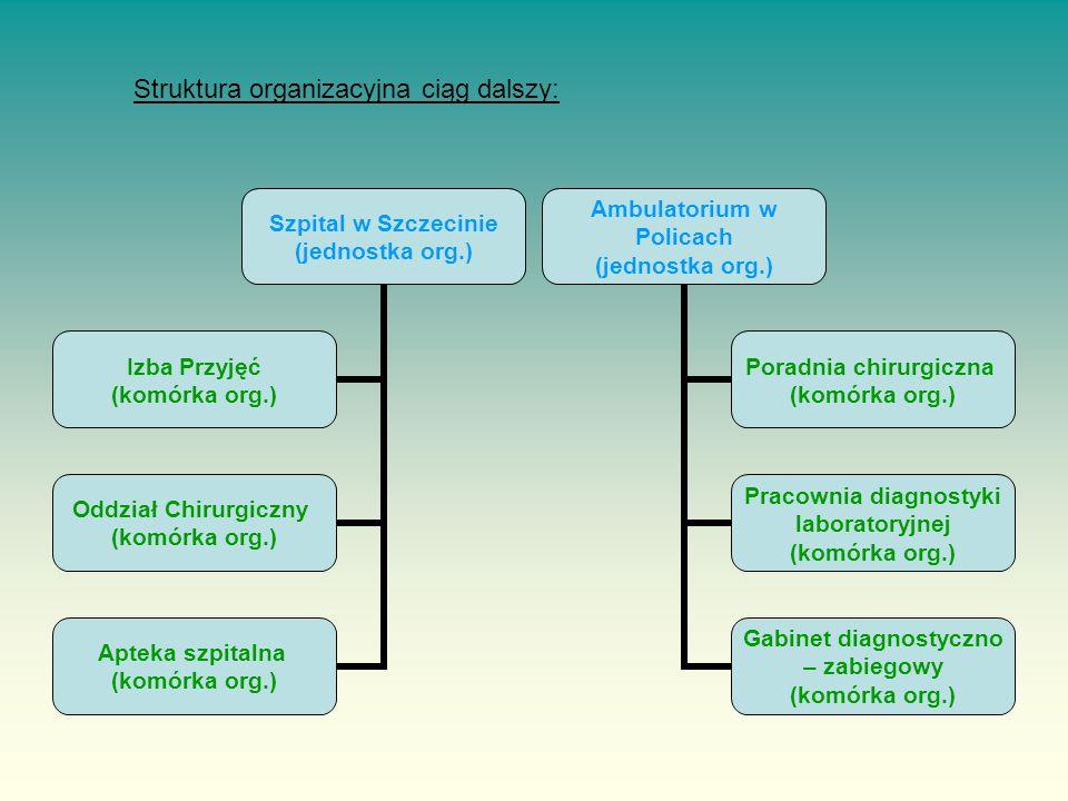 Struktura organizacyjna ciąg dalszy: