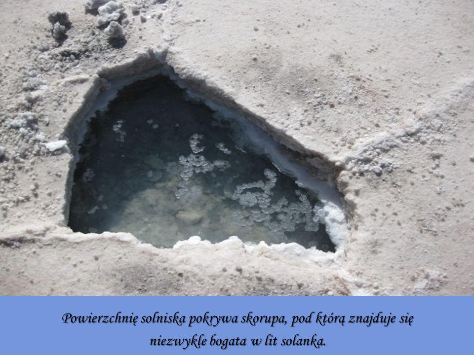 Powierzchnię solniska pokrywa skorupa, pod którą znajduje się