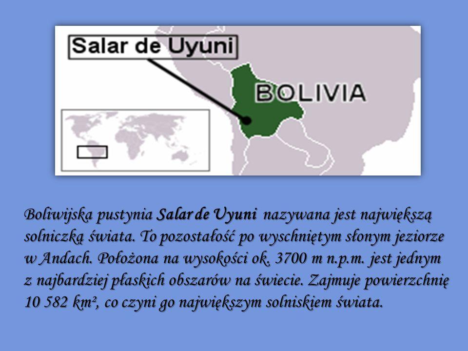 Boliwijska pustynia Salar de Uyuni nazywana jest największą solniczką świata. To pozostałość po wyschniętym słonym jeziorze w Andach. Położona na wysokości ok. 3700 m n.p.m. jest jednym