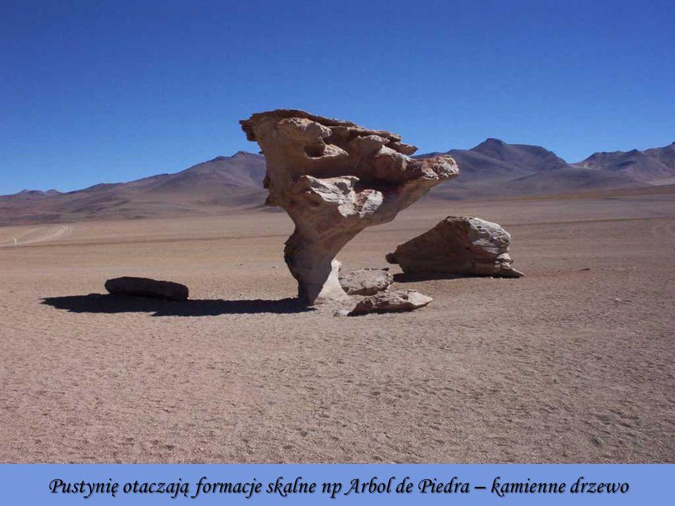 Pustynię otaczają formacje skalne np Arbol de Piedra – kamienne drzewo
