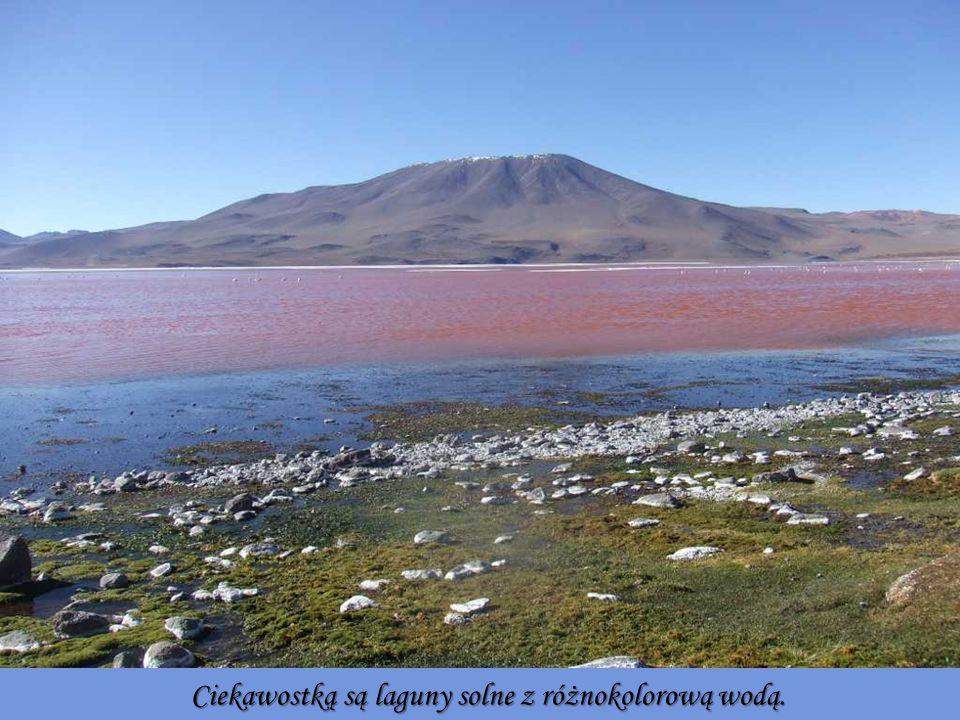 Ciekawostką są laguny solne z różnokolorową wodą.