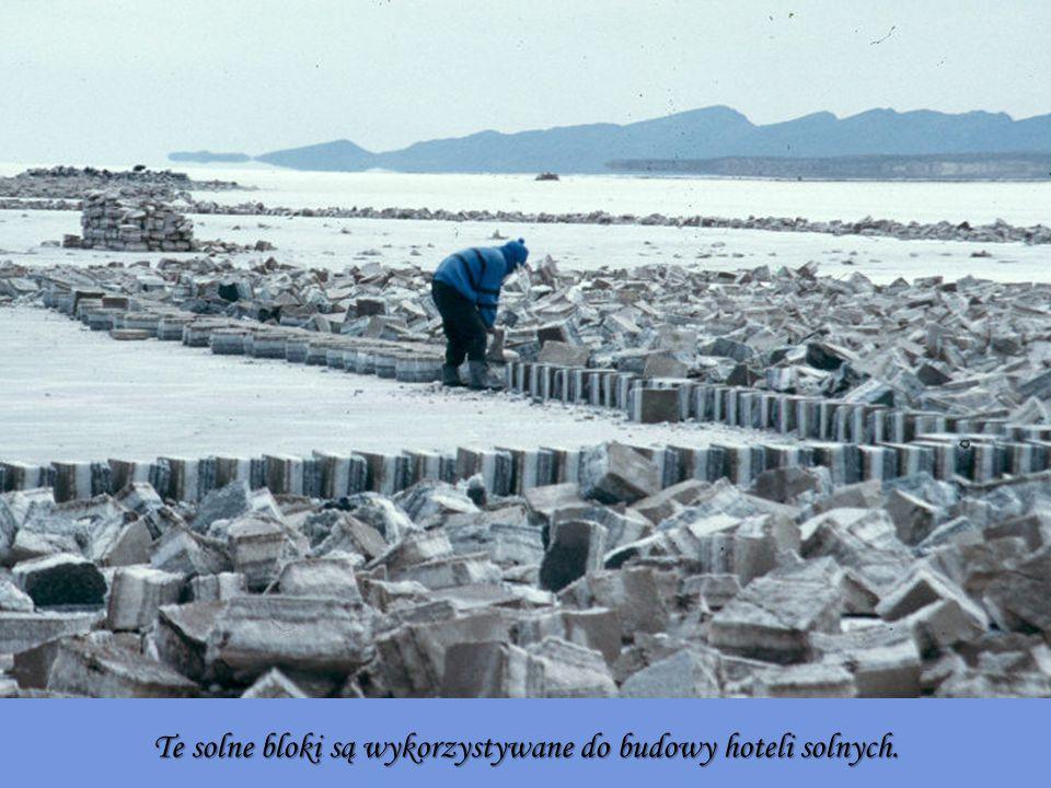 Te solne bloki są wykorzystywane do budowy hoteli solnych.