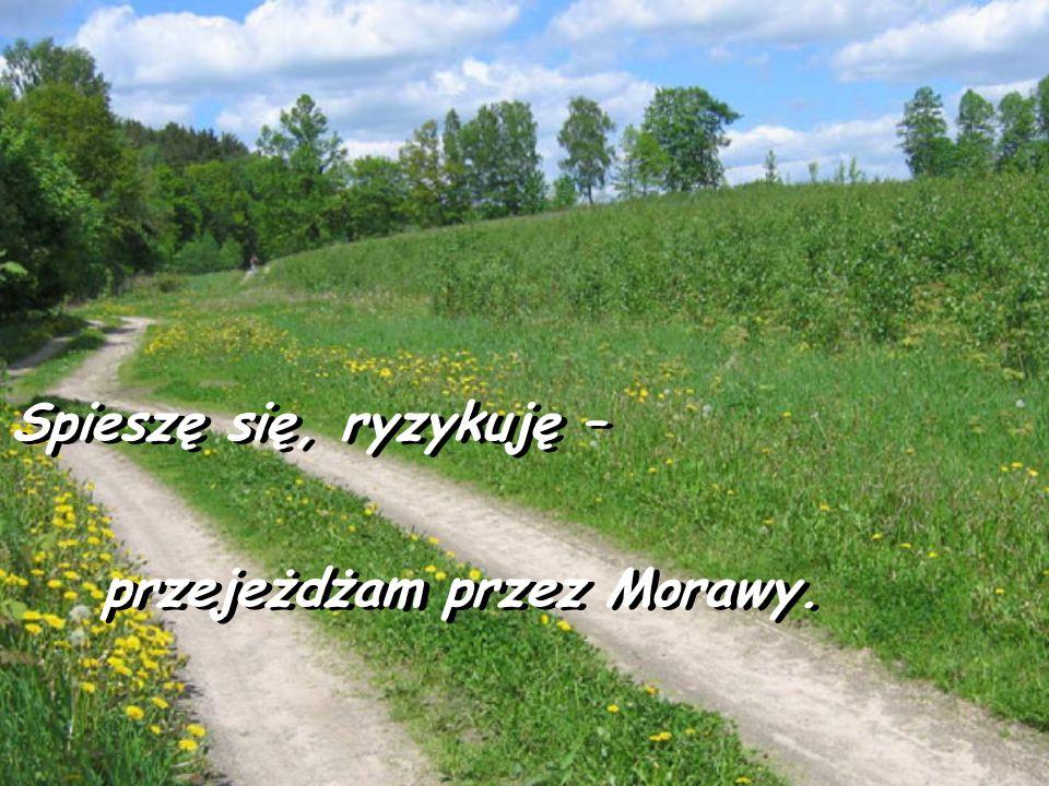 Spieszę się, ryzykuję – przejeżdżam przez Morawy.
