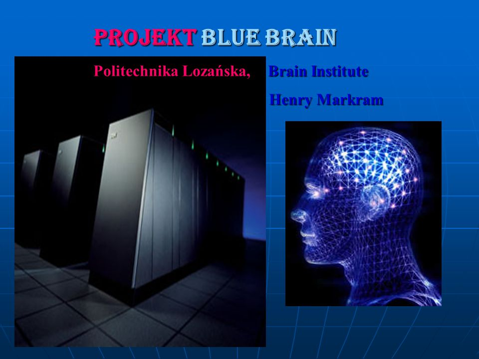 PROJEKT BLUE BRAIN Politechnika Lozańska, Brain Institute