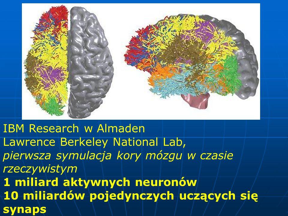 IBM Research w Almaden Lawrence Berkeley National Lab, pierwsza symulacja kory mózgu w czasie rzeczywistym.