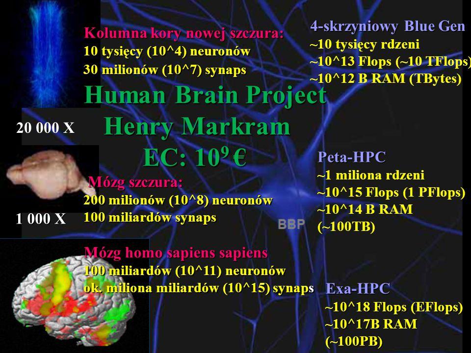 Human Brain Project Henry Markram EC: 109 € 4-skrzyniowy Blue Gen