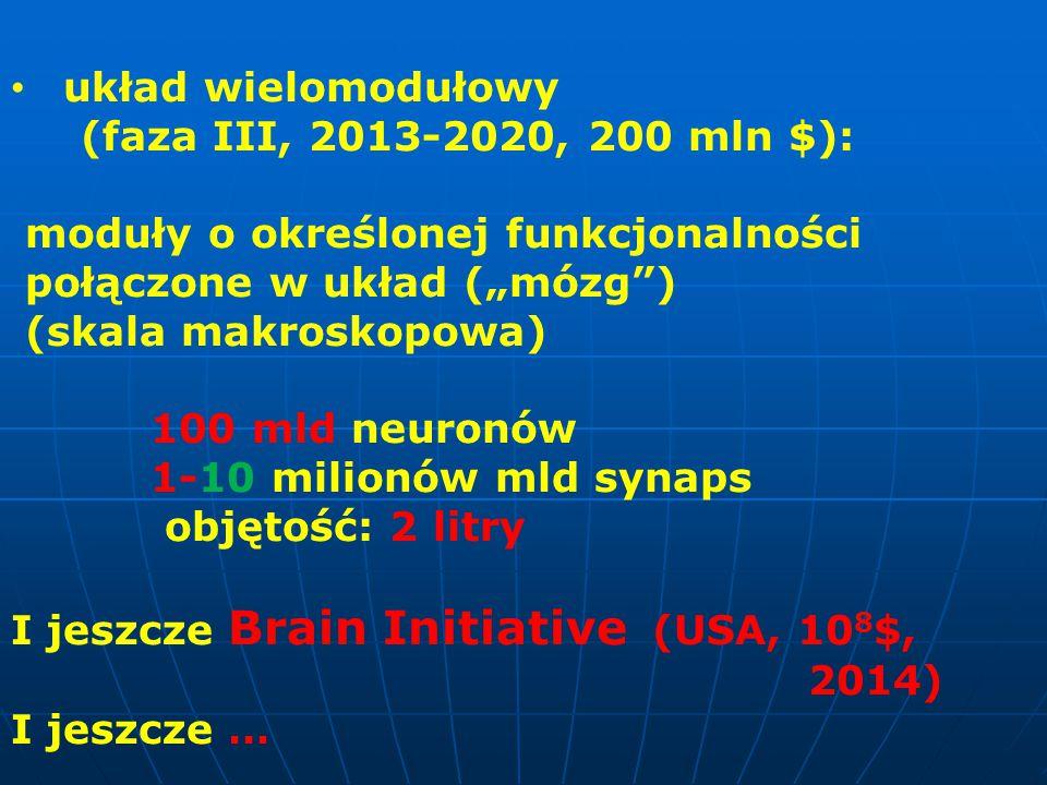 """układ wielomodułowy (faza III, 2013-2020, 200 mln $): moduły o określonej funkcjonalności. połączone w układ (""""mózg )"""