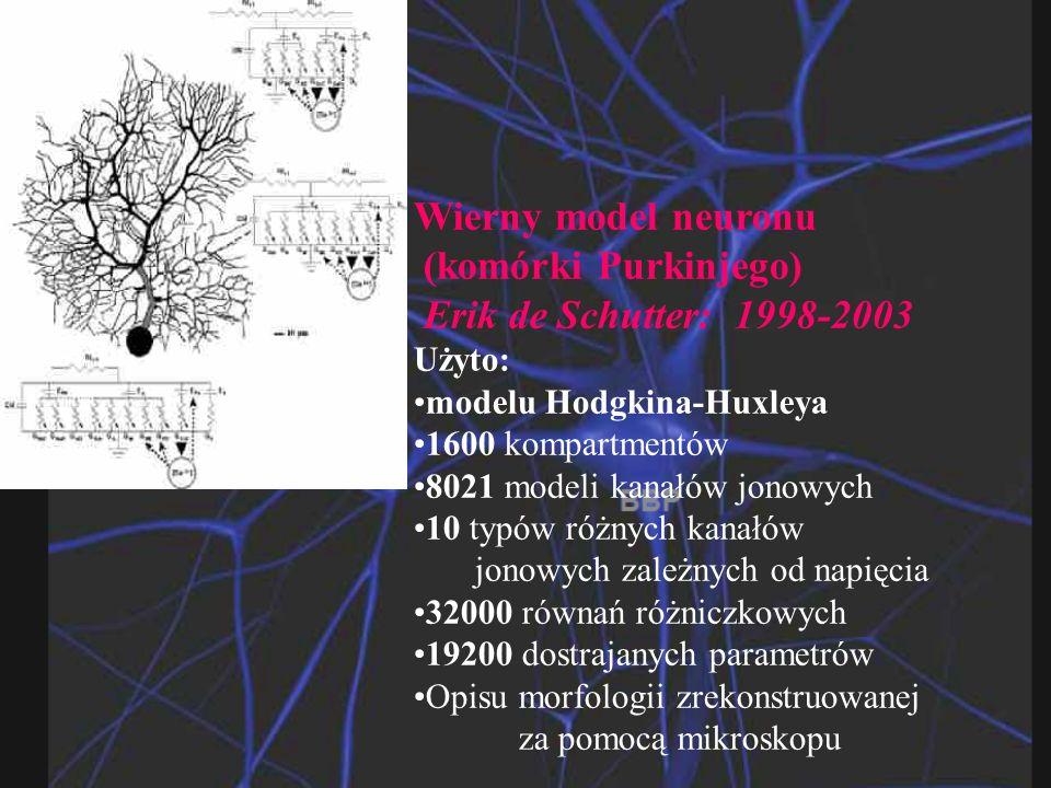 (komórki Purkinjego) Erik de Schutter: 1998-2003 Użyto:
