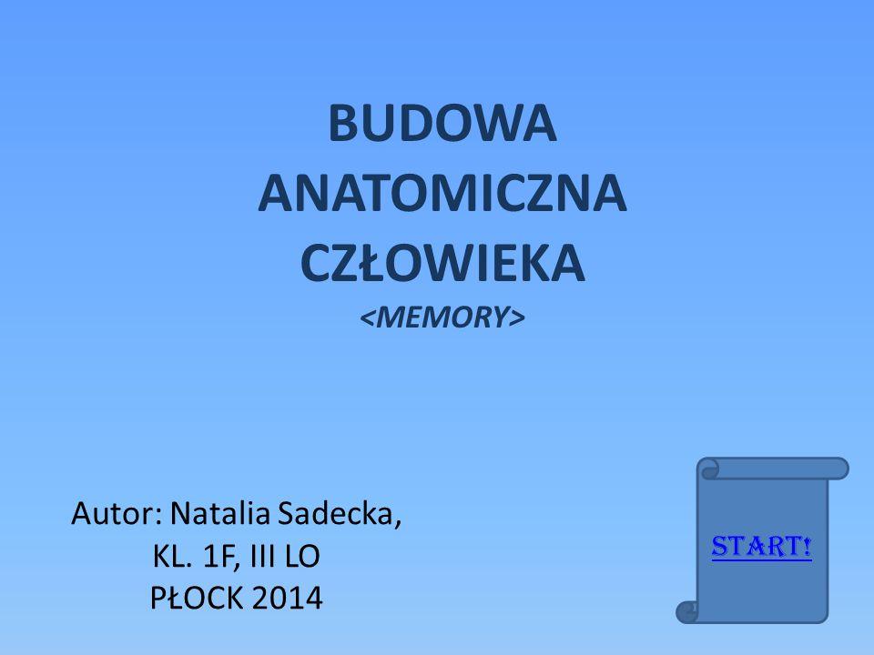 Autor: Natalia Sadecka, KL. 1F, III LO PŁOCK 2014