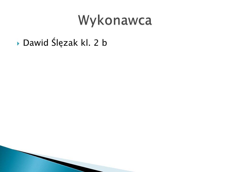 Wykonawca Dawid Ślęzak kl. 2 b