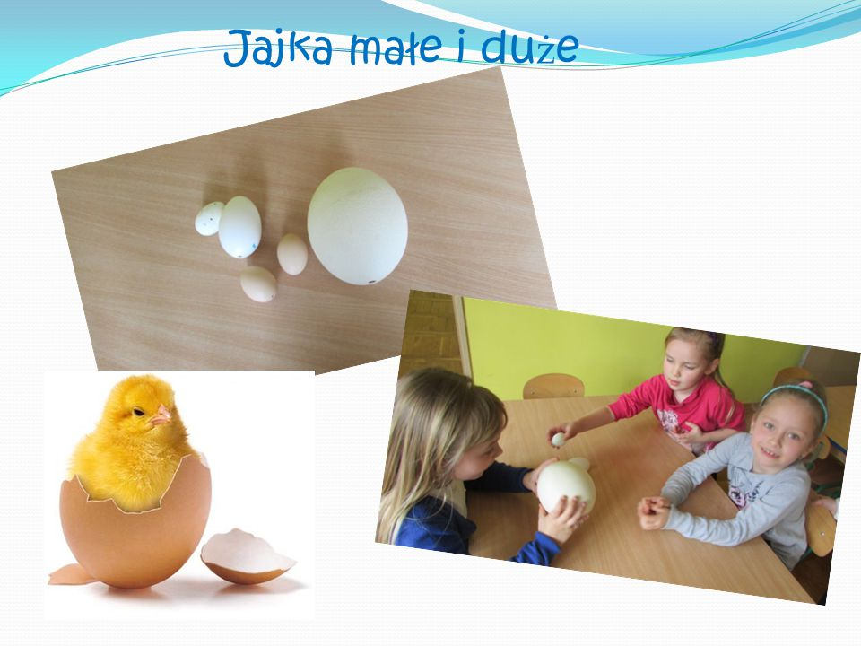 Jajka małe i duże
