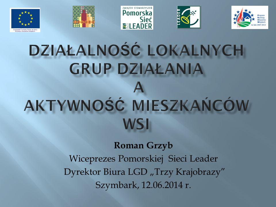 Działalność Lokalnych Grup Działania a aktywność mieszkańców wsi