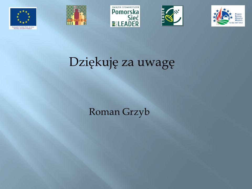 Dziękuję za uwagę Roman Grzyb