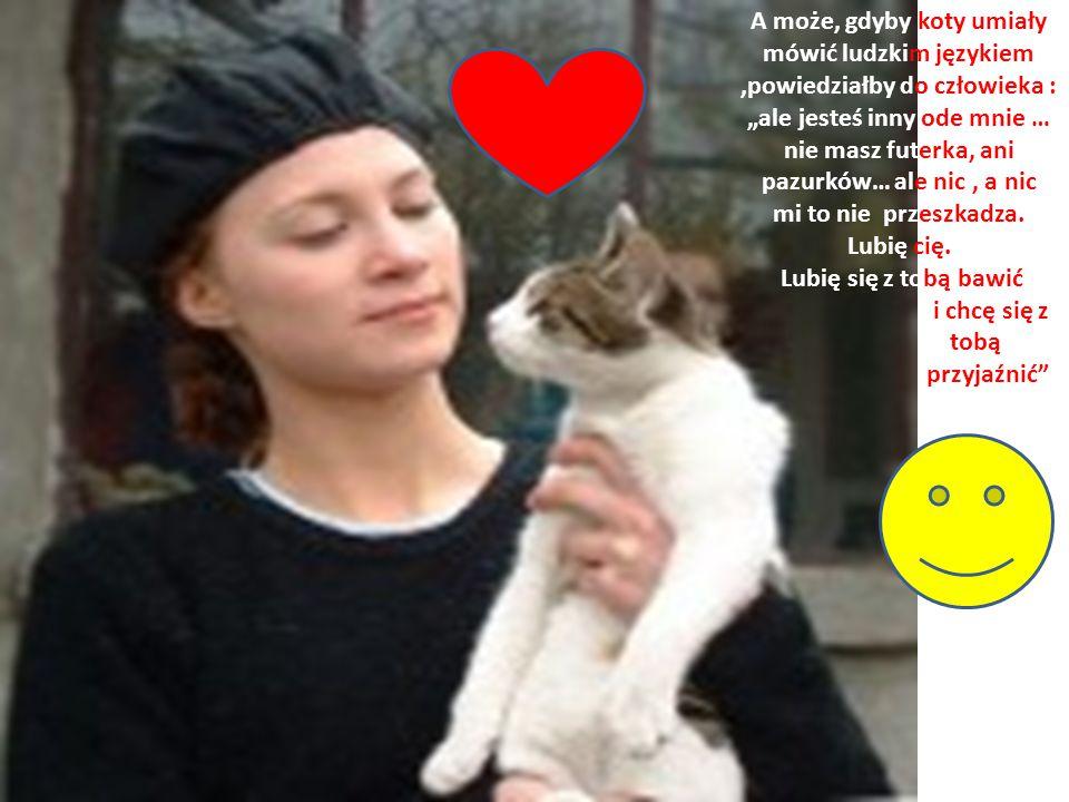 """A może, gdyby koty umiały mówić ludzkim językiem ,powiedziałby do człowieka : """"ale jesteś inny ode mnie … nie masz futerka, ani pazurków… ale nic , a nic mi to nie przeszkadza."""