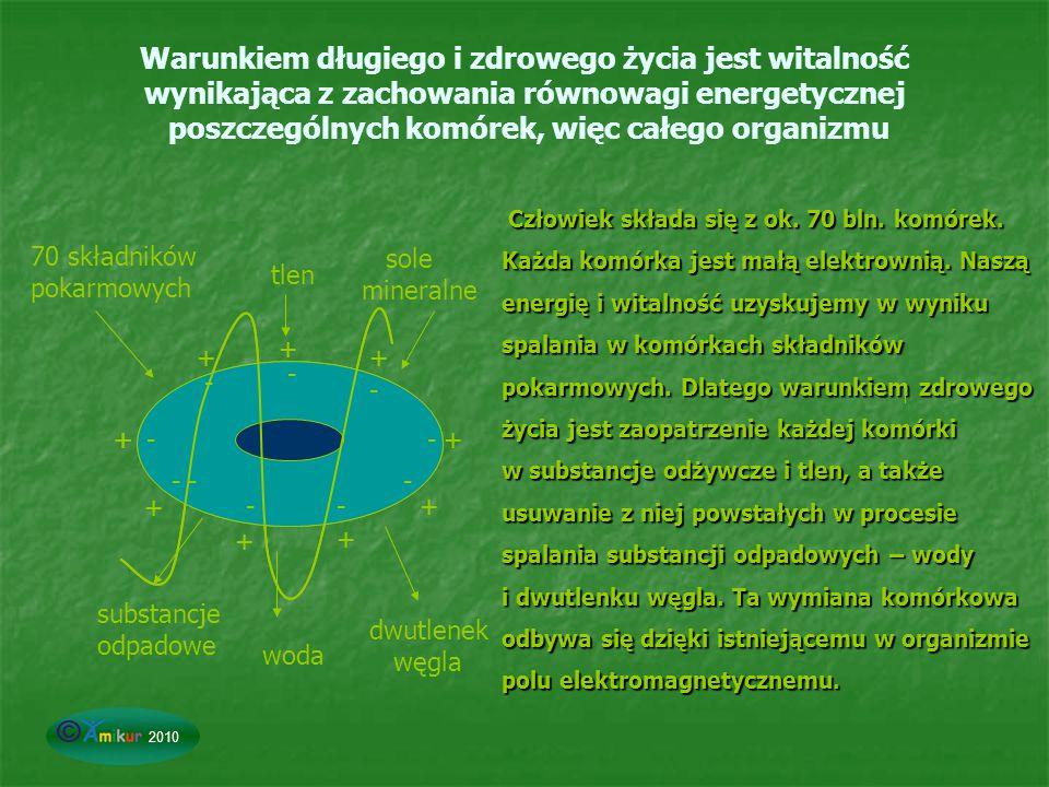 Warunkiem długiego i zdrowego życia jest witalność wynikająca z zachowania równowagi energetycznej poszczególnych komórek, więc całego organizmu