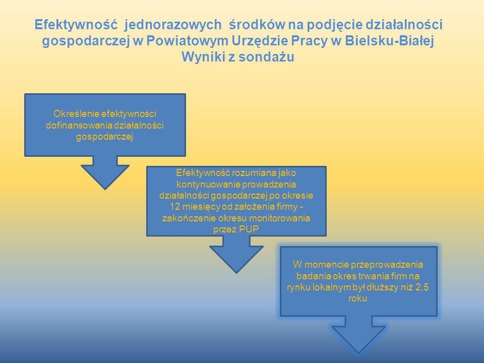 Określenie efektywności dofinansowania działalności gospodarczej