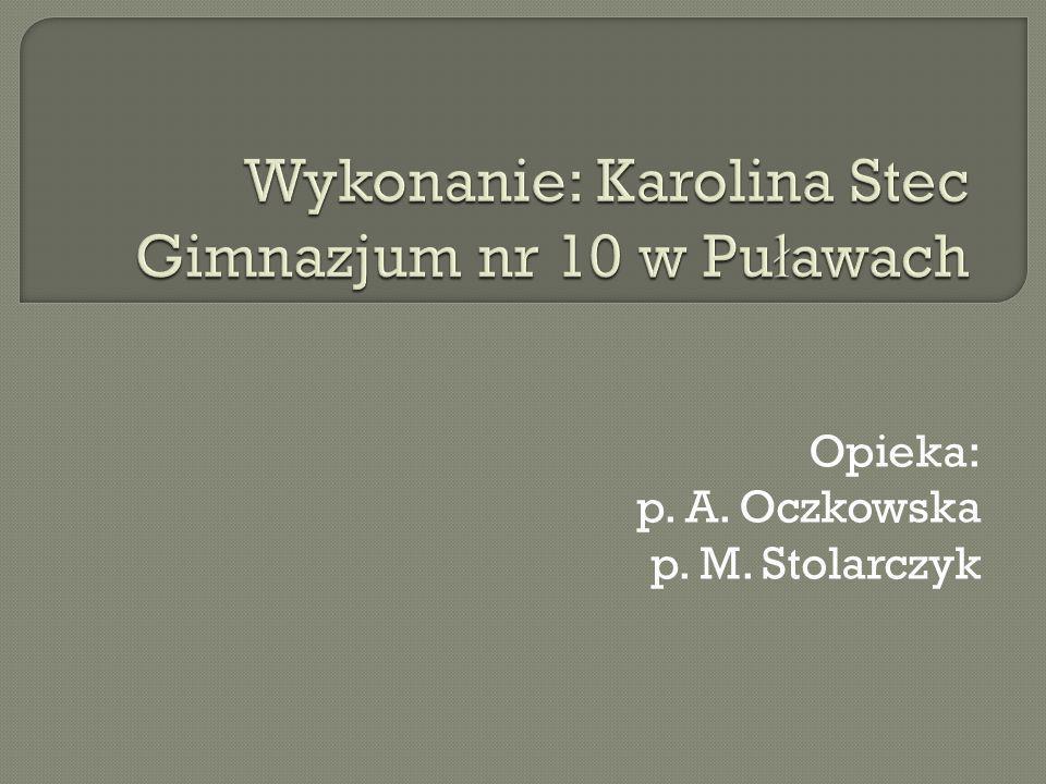 Wykonanie: Karolina Stec Gimnazjum nr 10 w Puławach