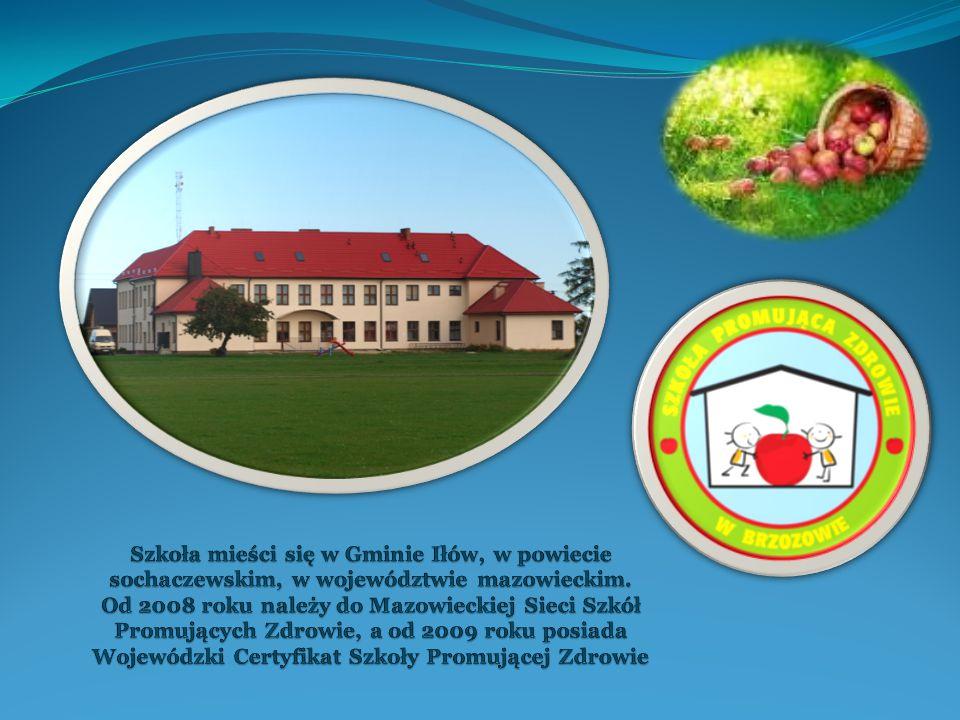 Szkoła mieści się w Gminie Iłów, w powiecie sochaczewskim, w województwie mazowieckim.